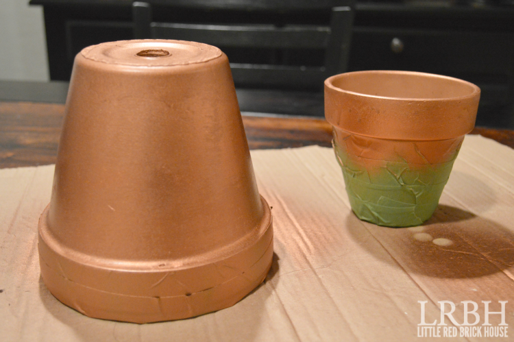 copper dipped pots